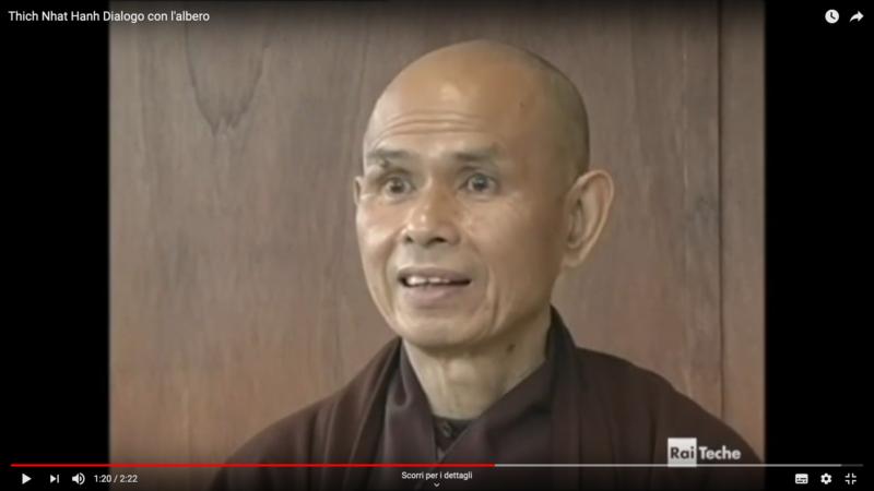 Thich Nhat Hanh:  Dialogo con l'albero